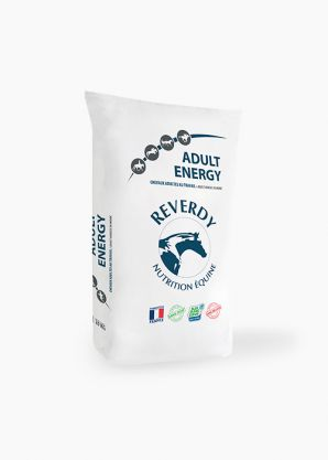 Adult Energy