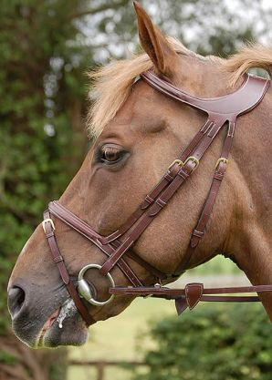 Flash noseband bridle - Difference Collection