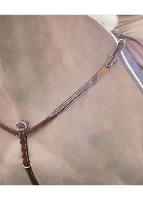 collier pour chien dyon