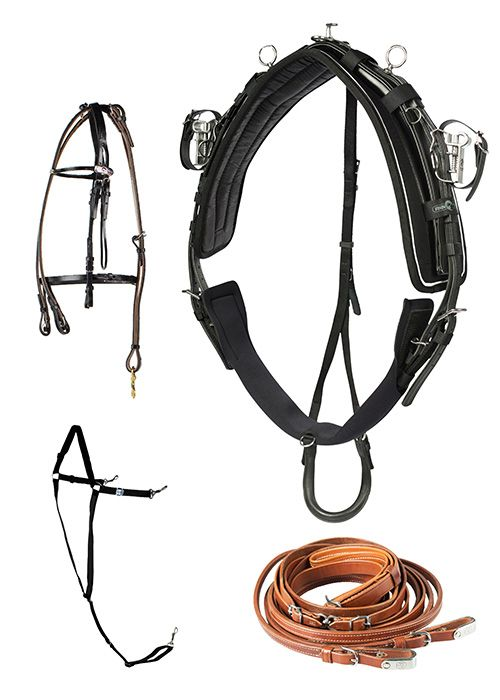 Harnais QH Pro complet