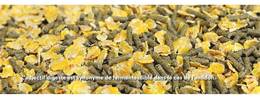L'adjectif digeste est synonyme de fermentescible dans le cas de l'amidon