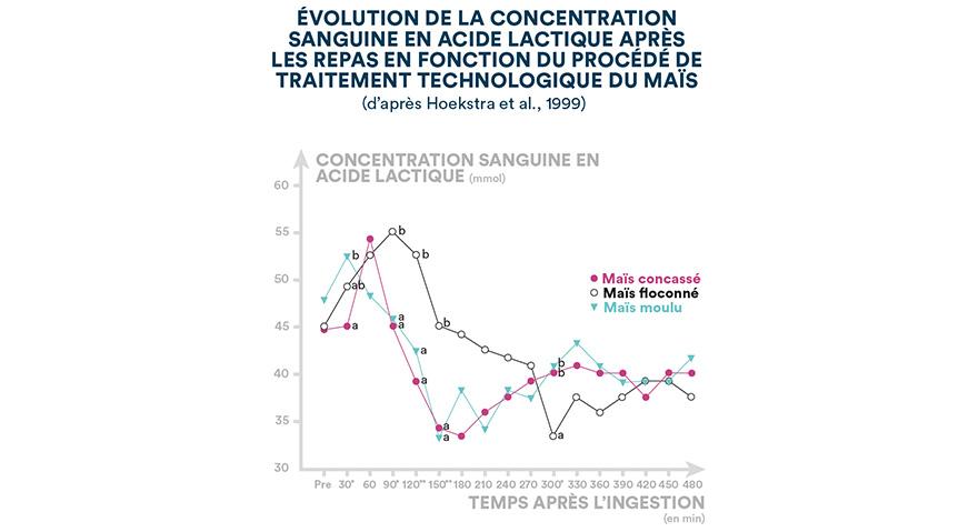 Évolution de la concentration sanguine en acide lactique après les repas en fonction du procédé de traitement technologique du maïs