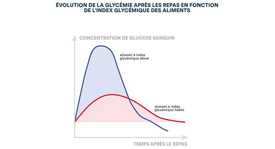 Évolution de la glycémie après les repas en fonction de l'index glycémique des aliments