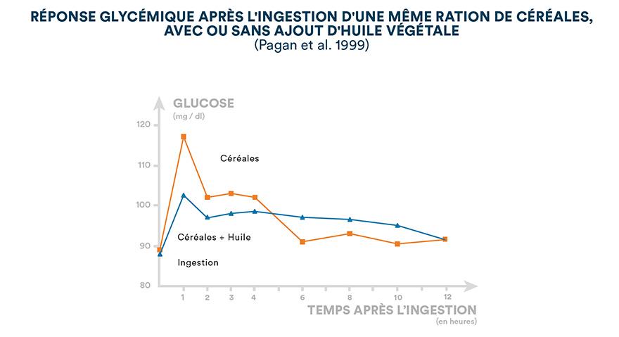 Réponse glycémique après l'ingestion d'une même ration de céréales, avec ou sans ajoute d'huile végétale