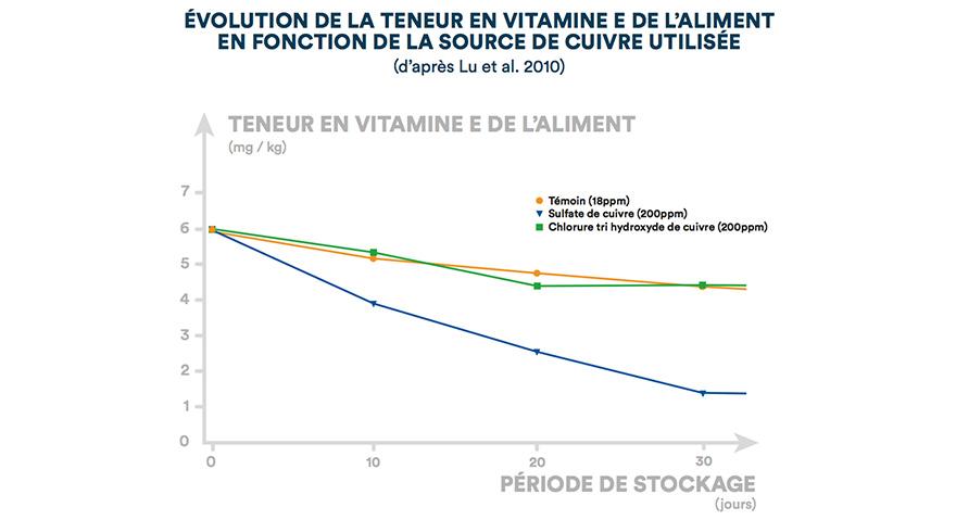 Évolution de la teneur en vitamine E de l'aliment en fonction de la source de cuivre utilisée