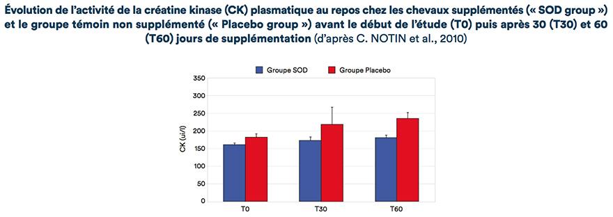 Évolution de l'activité de la créatine kinase (CK) plasmatique au repos chez les chevaux supplémentés (« SOD group ») et le groupe témoin non supplémenté (« Placebo group ») avant le début de l'étude (TO) puis après 30 (T30) et 60 (T60) jours de supplémentation
