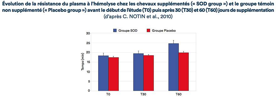 Évolution de la résistance du plasma à l'hémolyse chez les chevaux supplémentés (« SOD group ») et le groupe témoin non supplémenté (« Placebo group ») avant le début de l'étude (T0) puis après 30 (T30) et 60 (T60) jours de supplémentation