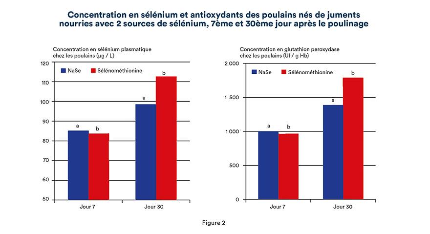 Concentration en sélénium et antioxydants des poulains nés de juments nourries avec 2 sources de sélénium, 7ème et 30ème jour après le poulinage