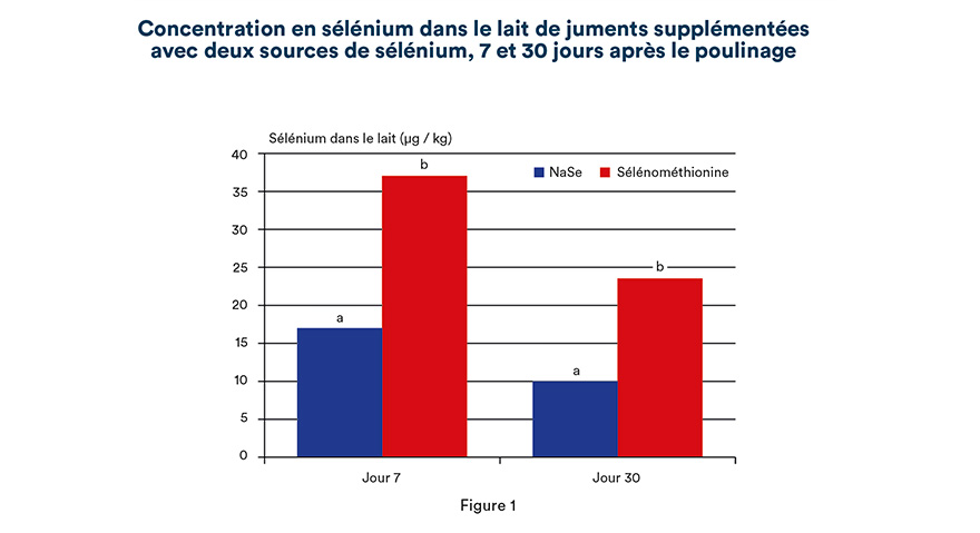 Concentration en sélénium dans le lait de juments supplémentées avec deux sources de sélénium, 7 et 30 jours après le poulinage