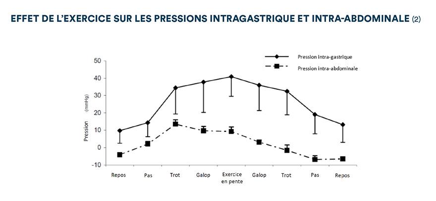 Effet de l'exercice sur les pressions intra-gastrique et intra-abdominale (2)