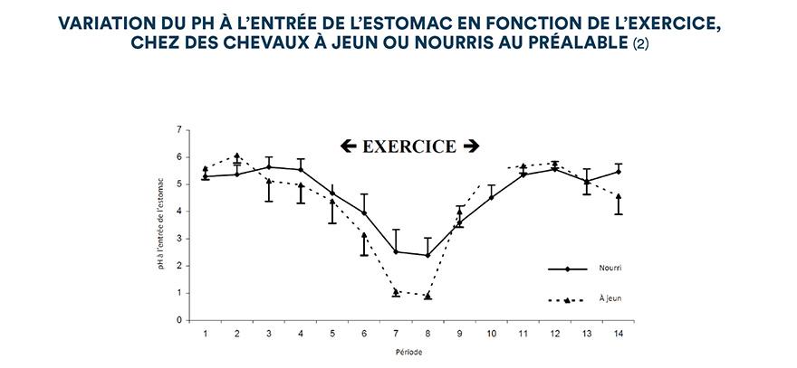 Variation du pH à l'entrée de l'estomac en fonction de l'exercice, chez des chevaux à jeun ou nourris au préalable