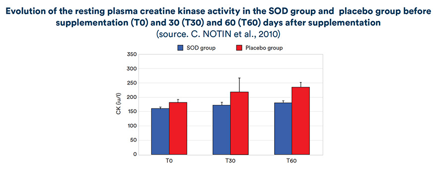 Evolution of the resting plasma creatine kinase activity in the SOD group and placebo group before supplementation (T0) and 30 (T30) and 60 (T60 days after supplementation