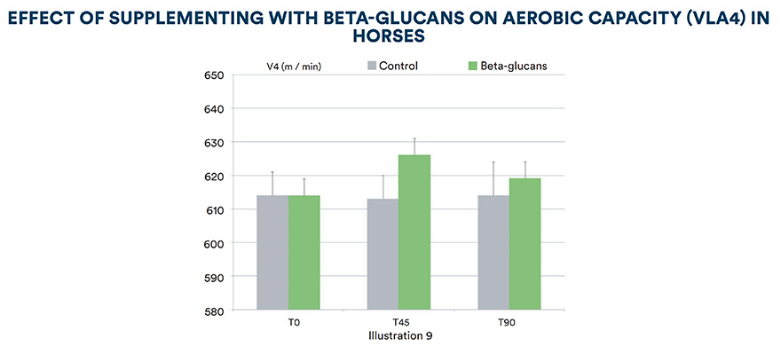 Effect of supplementing with beta-glucans on aerobic capacity (VLA4) in horses