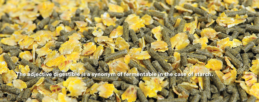 The adjective digestible is a synonym of fermentable in the case of starch