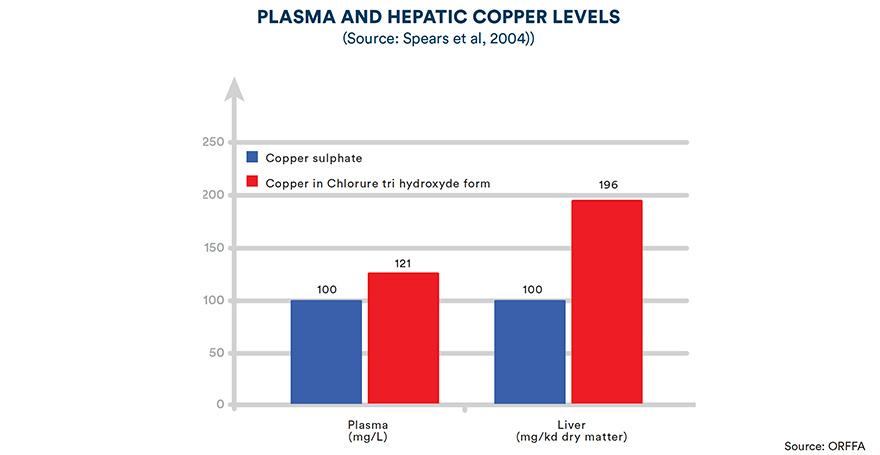 Plasma and hepatic copper levels