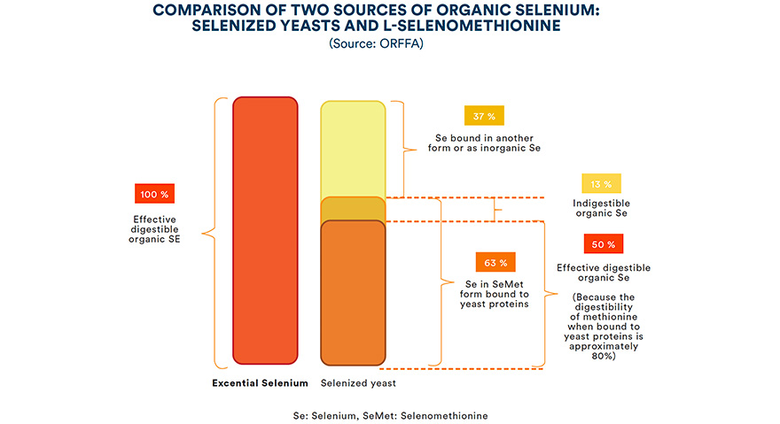 Comparison of two sources of organic selenium: selenized yeasts and L-selenomethionine