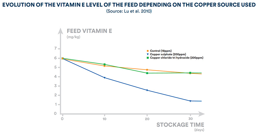 Evolution of the vitamin E level of the feed depending on the copper source used