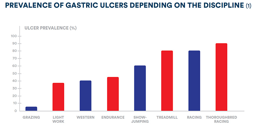 Prevalence of gastric ulcers depending on the discipline