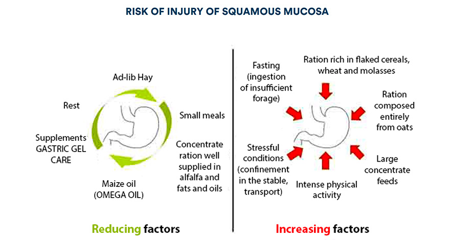 Risk of injury of squamous mucosa