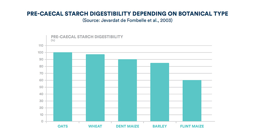 Pre-caecal starch digestibility depending on botanical type