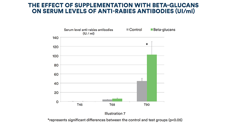 The effect of supplementation with beta-glucans on serum levels of anti-rabies antibodies (UI /ml)