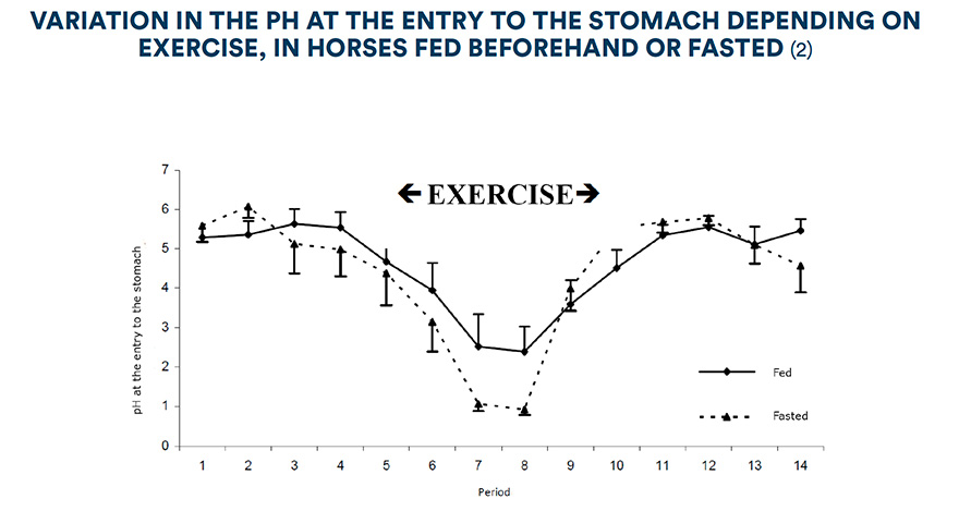 Variation in the pH at the entry to the stomach depending on exercise, in horses fed beforehand and fasted