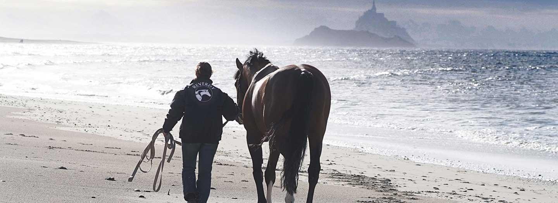 Couple Homme-Cheval sur la plage