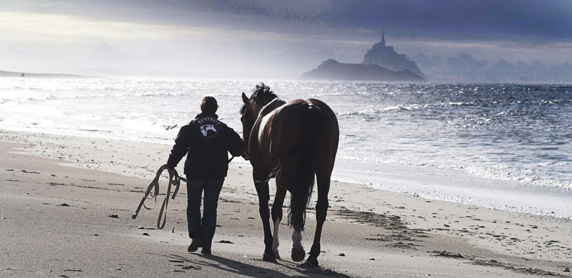 A man and a horse, walking on the beach
